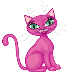 Kitty vector