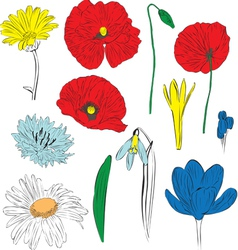 A set of spring flowers vector