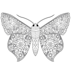 Butterfly coloring for adults vector image vector image