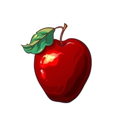 The red apple isolated on a white background vector image vector image