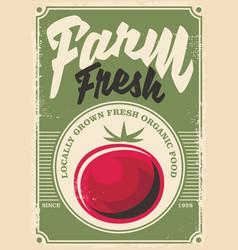 tomato farm vector image