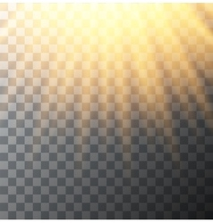 Modern sun background sunshine design vector