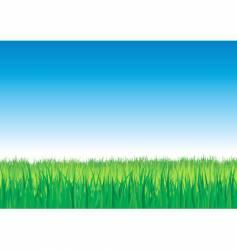 grass design vector image vector image
