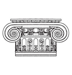 Ionic capital design vintage engraving vector