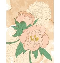 Peonies on grunge background with stains vector
