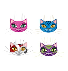 kittens muzzles vector image
