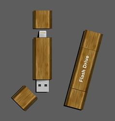 wood Dual-USB Micro USB Flash Drive vector image vector image