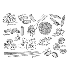 hand drawn pasta set Vintage line art vector image