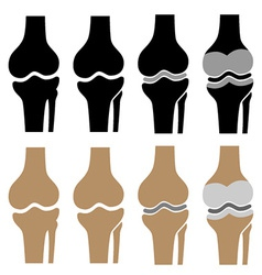 Human knee joint symbols vector