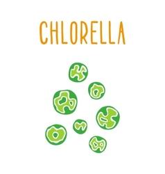 Chlorella vector