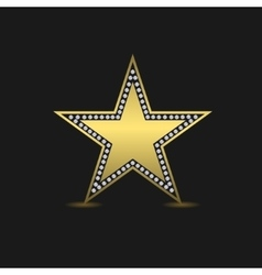 Golden luxury star vector image