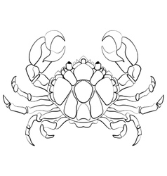 Hand drawn astrological zodiac sign Cancer vector image
