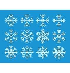 Set of the snowflakes icons vector image vector image