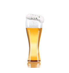 beer glass isolated on white background vector image vector image