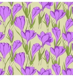 Crocus seamless patterm 2 vector