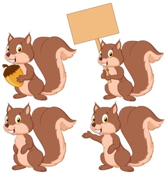 Cute carton squirrel collection set vector image vector image