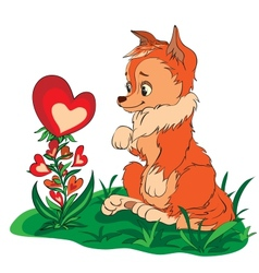 fox in a clearing looking at flower vector image vector image