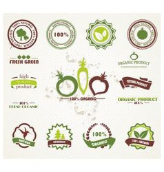 Labels nature vector image vector image