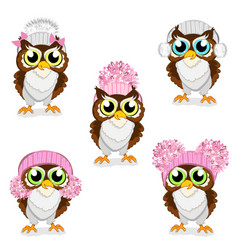 owls in knitted hats set vector image