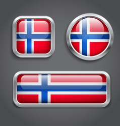 Norway flag glass buttons vector