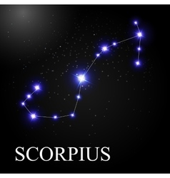 Scorpius zodiac sign with beautiful bright stars vector