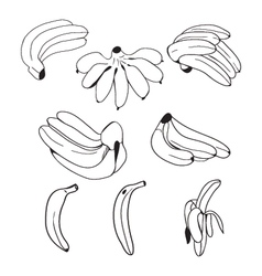 Set of hand drawn bananas doodle style vector