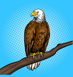 eagle bird pop art style vector image