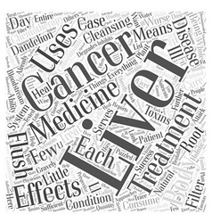 Liver cancer word cloud concept vector