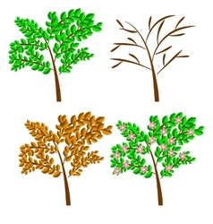 seasonal trees vector image