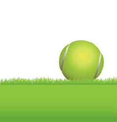 Tennis Ball in the Grass vector image vector image