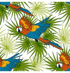 Pattern with macaw parrots and palm leaves vector