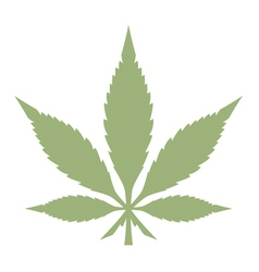 marijuana leaf vector image