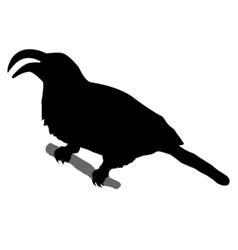 Silhouette of rhino bird vector