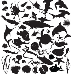 Silhouettes of marine life vector