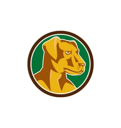 Labrador Golden Retriever Dog Head Circle Retro vector image vector image