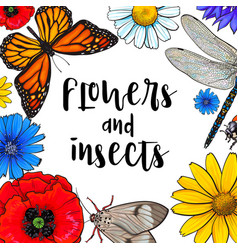 square banner - insects and flowers with round vector image vector image