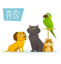 Home pets sitting in line isolated on white vector