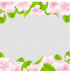 Apple tree flowers with frame vector
