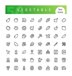 Vegetable Line Icons Set vector image