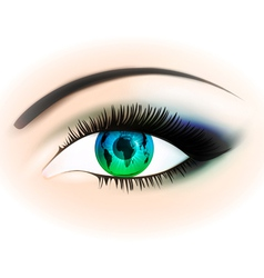 Woman Eye vector image vector image