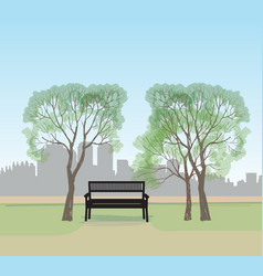 Bench in city park spring landscape city tree vector