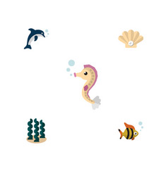 Flat icon sea set of playful fish seafood conch vector