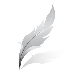 silver feather vector image