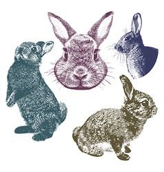 Vintage bunnies set vector