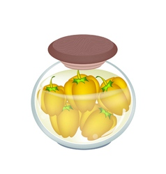 A jar of pickled orange bell peppers vector