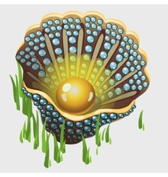 Open golden shell box with pearl and algae vector