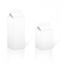 Cardboard carton pack 05 and 1lt vector
