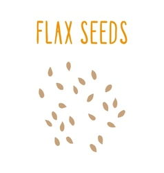 Flax seeds vector