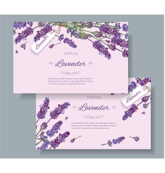 Lavender natural cosmetics banners vector