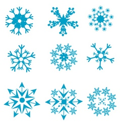 shapes of snowflakes vector image vector image